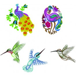 Matrizes de bordados aves lindas