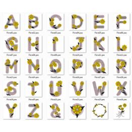 Matrizes Para Bordar Alfabetos Lindos Margaridas